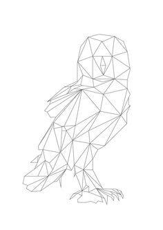Geometric Animal Google Search Focus Owl Tattoo Bird