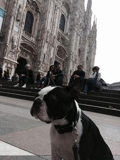 I ❤️ Milan