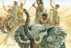 Elefantes cartagineses. Más en www.elgrancapitan.org/foro