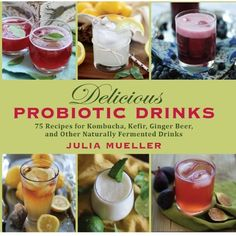 Delicious Probiotic Drinks: 75 Recipes for Kombucha, Kefir, Ginger Beer, and Other Naturally Fermented Drinks by Julia Mueller http://www.amazon.com/dp/1626363927/ref=cm_sw_r_pi_dp_sRXQtb1DGKV2K4R9