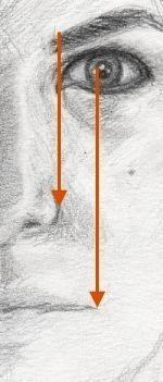 Proportionen Auge / Augenbrauen / Nasenflügel / Mundwinkel