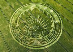 http://3.bp.blogspot.com/-uODWm2U3TWM/VSCR0RR83AI/AAAAAAAB2qI/oOsu3Dk-HTk/s1600/crop_circles.jpg