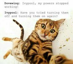 Warrior Cats Text Messages 2 - Dovewing's Powers - Wattpad