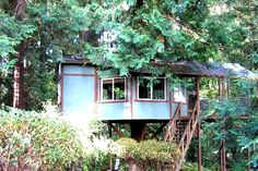 This unique tree house has a beautiful cedar tree growing right through the living quarters, and that is not the only quirk this stunning accommodation has to offer. Glampers can enjoy the beautiful wildlife and clear skies, whilst lying in the queen-size bed as they look through the skylight at the luscious trees and wildlife above. Apart from the myriad of wildlife, this site offers proximity to a beautiful beach where guests can witness the sun set over the breathtaking Olympic Mountains.