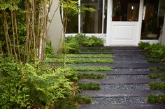 The brief was to create an entrance garden in an existing expansive driveway. AS one makes one way to the front door, one transitions through 3 distinct spaces: Oak Avenue, Garden Pavers, Front Door Entrance, Garden Types, House Landscape, Contemporary Garden, Private Garden, Big Houses, Pathways