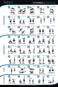 Dumbbell Exercise Poster 20x30 Workout With 40 Exercises And QR Codes To Video Demonstrations Help You Build Muscle Burn Fat