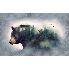 "Hoffman Fabrics Call Of The Wild"" Bear A Hoffman Spectrum Print Forest   Quilting Panel   Fabric"