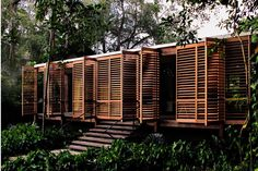 When architects Melissa and Jacob Brillhart set out to design their new home in downtown Miami, they drew inspiration from Florida modernism and the dogtrot model to create a tropical oasis in the city. The couple designed and built most of the home themselves, making it a truly personal haven.