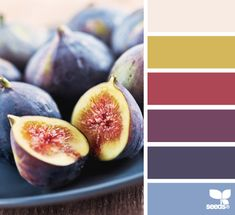 fig hues - love these colours