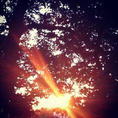 the Sunshine peeking in...