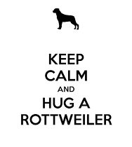 Keep Calm and Hug A Rottweiler Rottweiler Quotes, Rottweiler Funny, Rottweiler Puppies, Best Dog Photos, Cute Dog Photos, Funny Dog Pictures, Best Dog Breeds, Dog Behavior, Dog Names