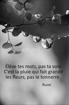 Elevate your words, not your voice. It is the rain that makes the flowers grow, not the thunder. Dream Quotes, Quotes To Live By, Best Quotes, French Words, French Quotes, The Words, Positive Attitude, Positive Vibes, Motivational Quotes