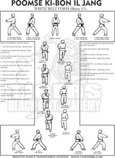 WTF Form Koryo 1st Dan / Poom Black Belt form. Working on
