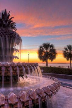 Sunrise,Charleston, SC Pineapple Fountain   - ©Dustin K Ryan (via FineArtAmerica)