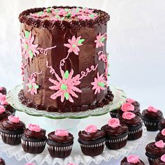 SugaryWinzy Dark Chocolate Cake and Cupcakes