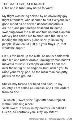 The Gay Flight Attendant