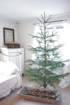 A Natural-Growth Christmas Tree - Homeology Modern Vintage