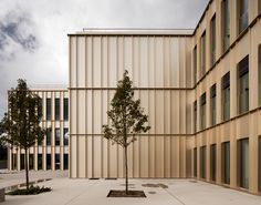 Modern, metal interpretation of the classical trabeated facade. The HEC Paris by David Chipperfield.
