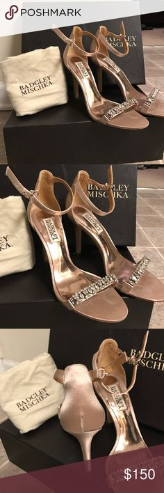 "Badgley Mischka ""Elope"" Ebellished Heel These sparkly heels are perfect for weddings or a fancy night out. Only worn once for 1 hr. Comes with original box and dust bag as well as extra crystals just in case. Badgley Mischka Shoes Heels"
