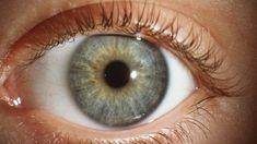 Monet pitävät näköaistia ihmisen tärkeimpänä aistina. Happy People, Eyes, Monet, Science, Flag, Science Comics