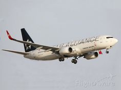 Boeing 737 of Turkish Airlines. New York Night, Turkish Airlines, Uganda, Aviation, Aircraft, Europe, Activities, Planes, Airplane