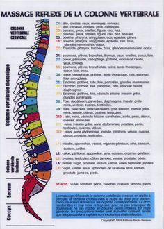 Shiatsu Massage – A Worldwide Popular Acupressure Treatment - Acupuncture Hut Cupping Therapy, Massage Therapy, Shiatsu, Tai Chi, Accupuncture, Reflexology Massage, Face Massage, Massage Room, Mind Maps