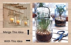 Hang mason jars in the kitchen for growing herbs.