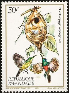 Olive-bellied Sunbird stamps - mainly images - gallery format