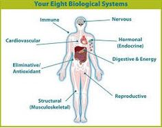 Kinds Of Diseases, Systems Biology, First Health