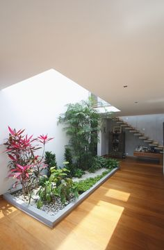Interior Garden Comfortable Home Modernly Decorated Welcomes the Nature Inside by Oscar Gonzalez Moix