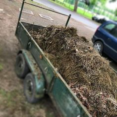 Having cleared out the garden from our poorly sheep guests . it looks like we are sending the to his forever home Sheep, Wood, Garden, Instagram, Garten, Woodwind Instrument, Timber Wood, Lawn And Garden, Gardens