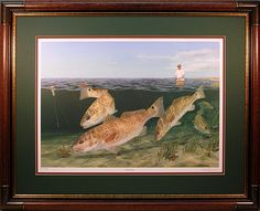 13 Best Redfish Wall Art Images Goldfish Red Fish Fish Art