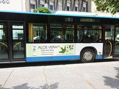 aloe vera, πόσιμη , συμπλήρωμα διατροφής agpharm Aloe Vera Gel, Nature, The Great Outdoors, Mother Nature, Scenery, Natural