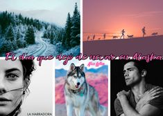Alaska, Alice, Book Lovers, Books, Movies, Movie Posters, Collages, Baby, Books To Read