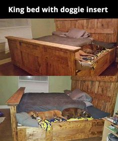 Queen Bed Frame Rate this from 1 to Queen Bed Frame 42 DIY Recycled Pallet Bed Frame Designs 10 DIY Pallet Bed Frames Austen Queen Bed Inexpensive and Diy Dog Bed, Diy Bed, Doggie Beds, Pet Beds, Poo, Reclaimed Wood Beds, Bed Parts, King Bed Frame, Rustic Bedding