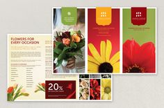 Stylish Florist Brochure Template - The bright colors, stylish shapes and clean type of this florist brochure work together to convey an image of serious chic. Any florist or gift shop could use this brochure to provide information to customers, and the design includes plenty of space for unique photos and company-specific details