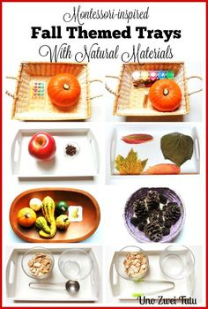 11 Montessori inspired activities with natural fall materials. Montessori-inspired trays for toddlers and preschoolers. Montessori Trays, Montessori Kindergarten, Montessori Homeschool, Montessori Toddler, Montessori Materials, Montessori Activities, Toddler Preschool, Homeschooling, Montessori Playroom