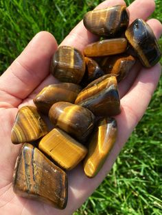Tigers Eye (tumbled gemstone)