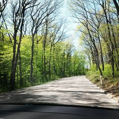 Wochenendausflug 😍 #wochenende #wienerwald #weekend #wandern #sonne #wald #höhenstrasse #rausindiesonne #vienna #igersvienna #viennawoods Weekender, Country Roads, Sun, Hiking, Woodland Forest