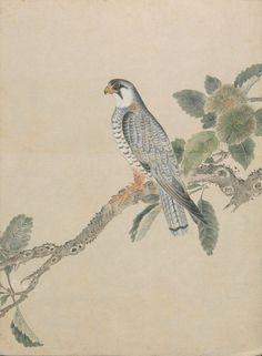 Все размеры | Чернила + акварель Птица эскиз ч | Flickr - Photo Sharing!