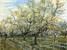 "vincentvangogh-art: "" Orchard with Blossoming Plum Trees, 1888 Vincent van Gogh """