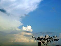 Nubes en el eden: ECUADOR