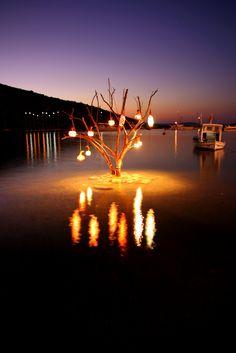 light tree ( Bodrum - Gümüşlük-Turkey)