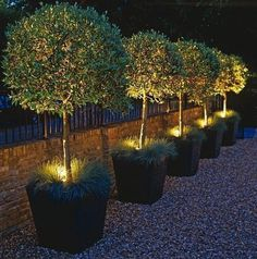 Outdoor lighting ideas will shed some light on your own backyard design. Including solar lights, landscape lights and flood light options to illuminate your garden. #outdoorideaslighting