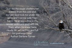 Darlene Turner quote over mountain scnene with eagle and resilience expert Elizabeth Van Tassel