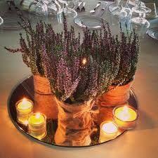 Výsledok vyhľadávania obrázkov pre dopyt lavender decorations