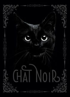Chat noir  - Nathalie Semenuik