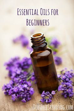 New to Essential Oils? We can show you how to get started on your oily journey.
