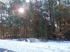This is a nicely wooded and level .83 acre lot to build your dream home.  It has a convenient city location with a quiet country feel.  Dont miss this awesome property with chain link fence already bordering one side.  Nothing else in town compares to this wonderful well-priced property.