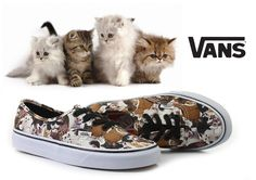 #vansaspca #vans #kitten #officehoes #shoes  http://www.officeshoes.hu/cipo-vans-tornacipo-authentic/5125